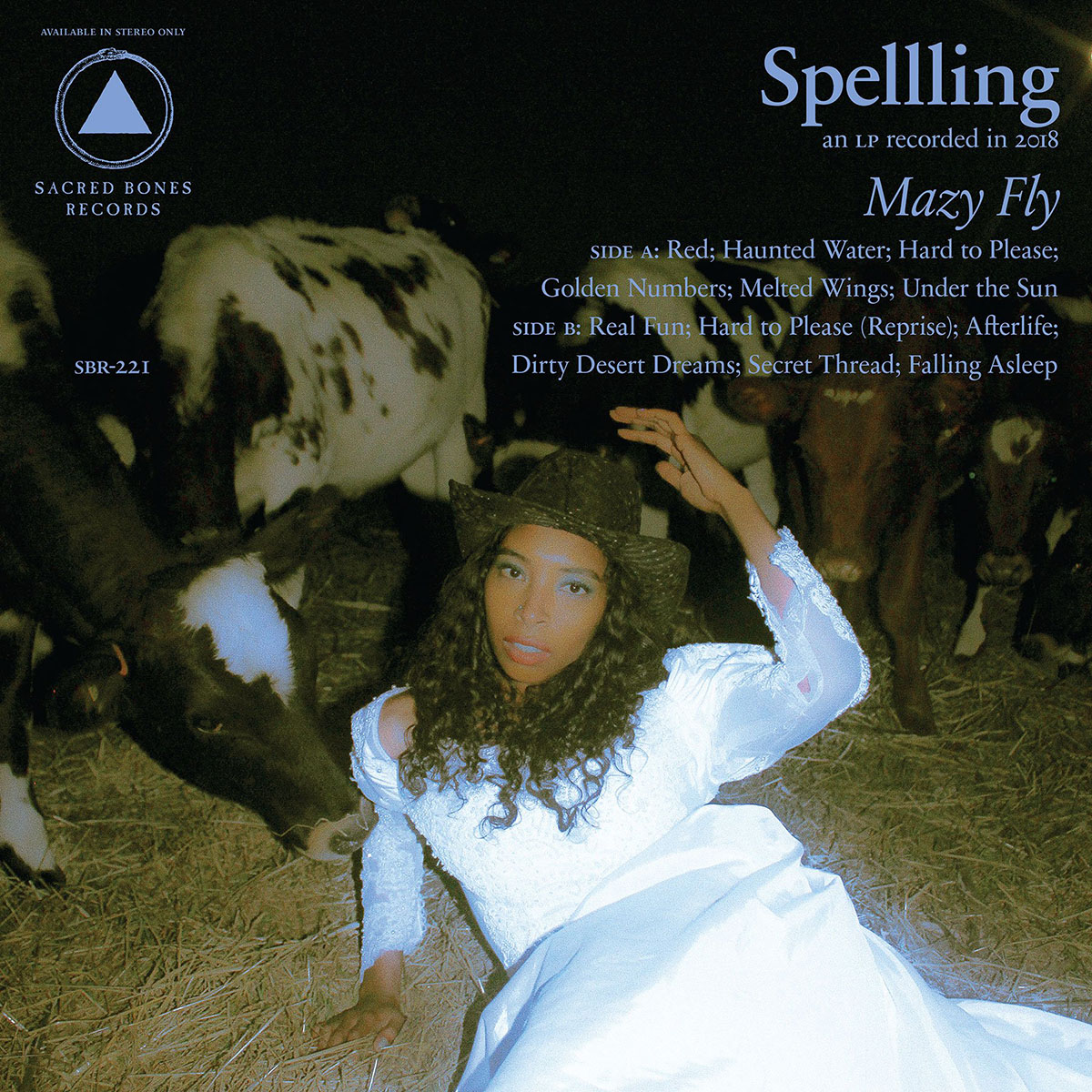 Spellling Mazy Fly Music Review Tiny Mix Tapes