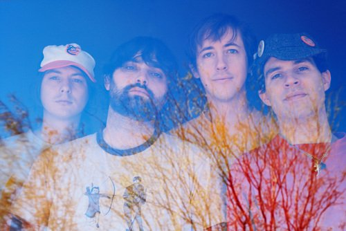 Animal Collective reschedule live dates with the haste of a Peregrine Falcon set on not disappointing her anxious young