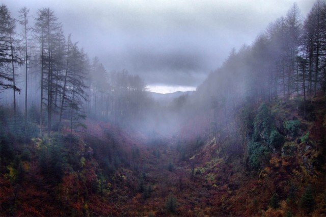 A 24-hour radio broadcast of unheard music is happening in Scotland's Galloway Forest, Magna Carta Holy Grail's Samsung domination plan to remain unaffected