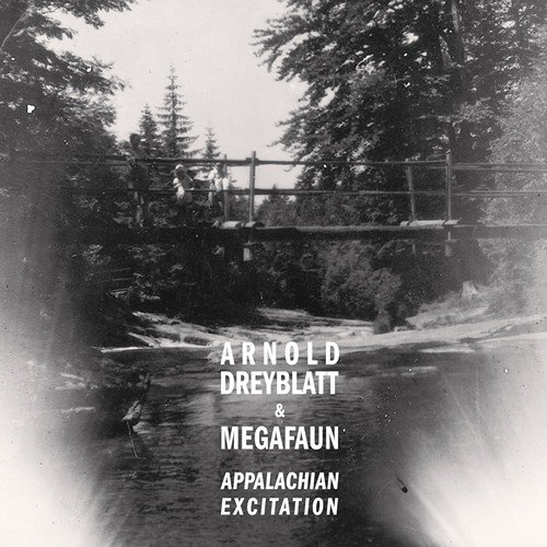 Arnold Dreyblatt and Megafaun collaborate on new full-length for Northern Spy; generations to come will speak in hushed tones of the APPALACHIAN EXCITATION