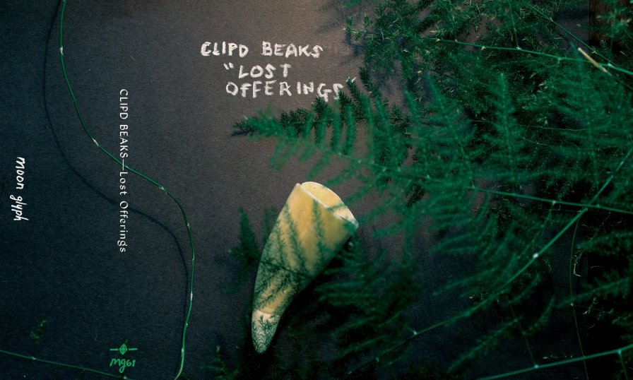 Hey! Look! Clipd Beaks have a new album out on Moon Glyph!