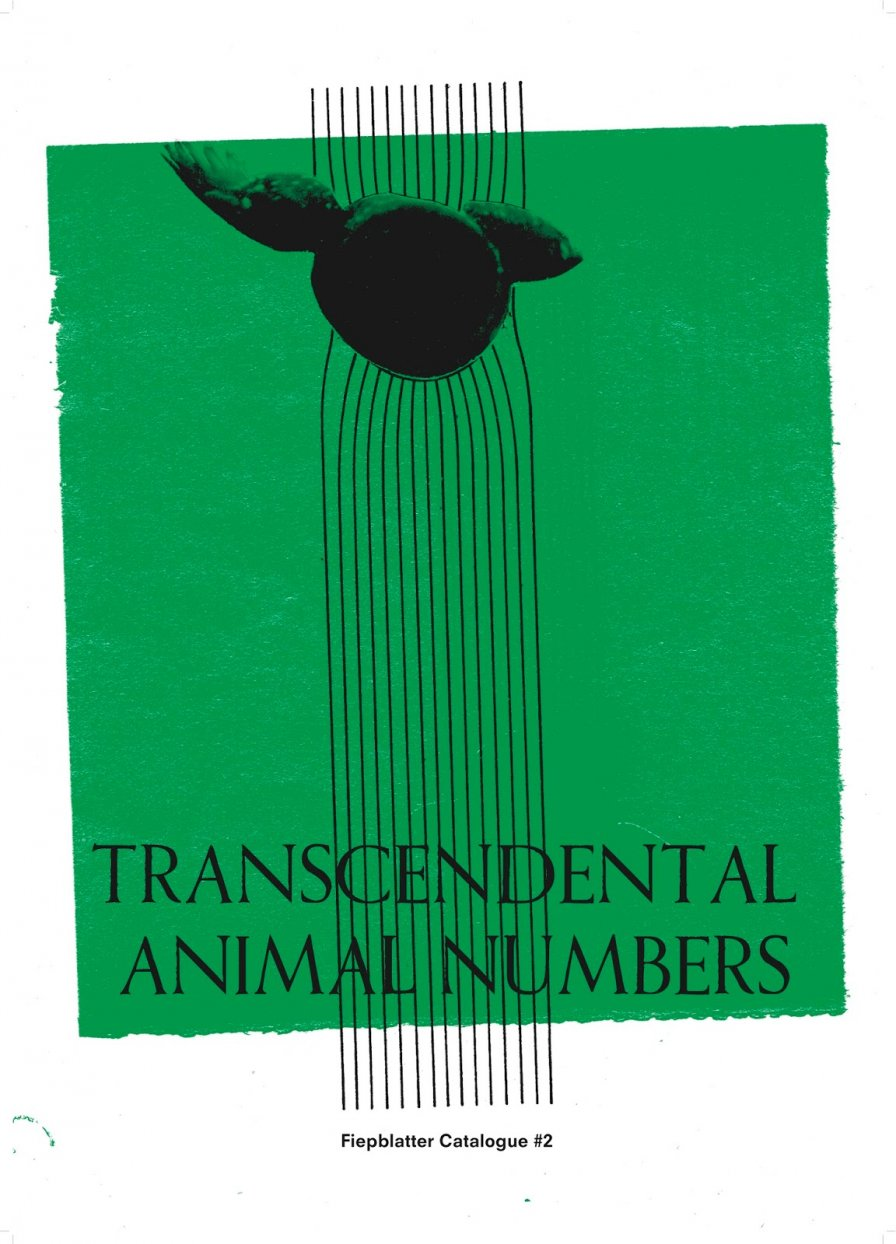 Thrill Jockey brings the future of the past to the present today with first-ever cassette-only release, Jan St. Werner's Transcendental Animal Numbers