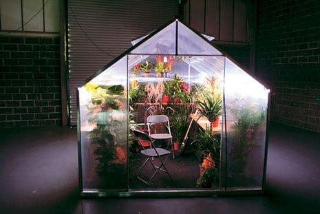Kelela, Ryuichi Sakamoto, Teengirl Fantasy, and more to serenade your salad on upcoming Music For Plants LP