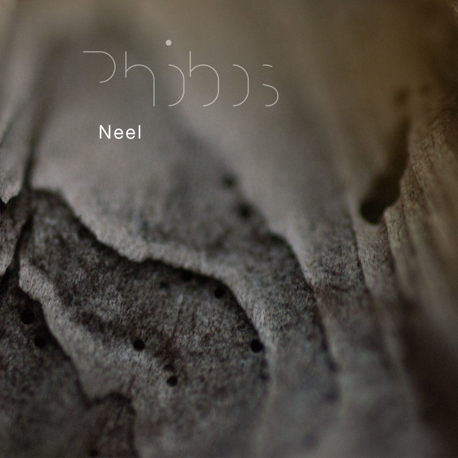 Neel (Voices from the Lake) listens to Martian whispers instead, announces debut solo LP Phobos on Spectrum Spools