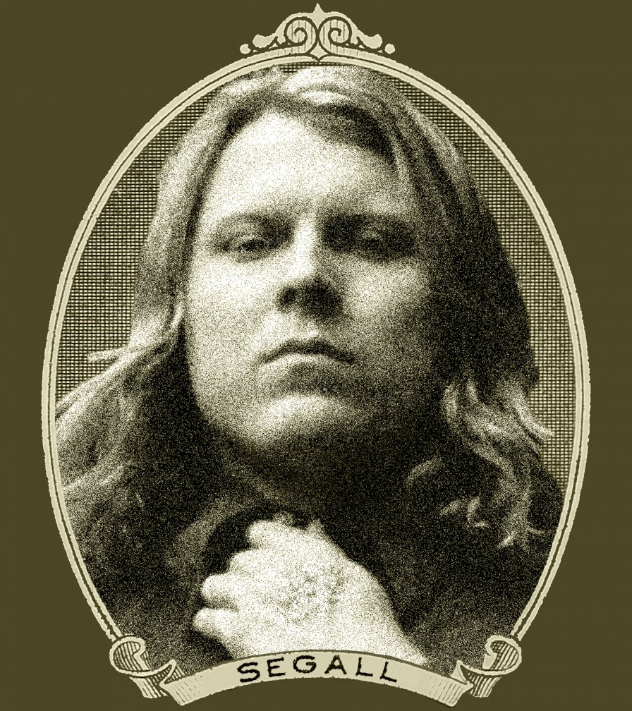 Ty Segall announces acoustic tour, throws shade toward former friend electricity