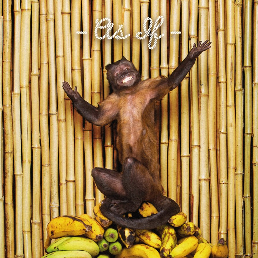 !!! (chk chk chk) release new album with the best cover arrt of this decade