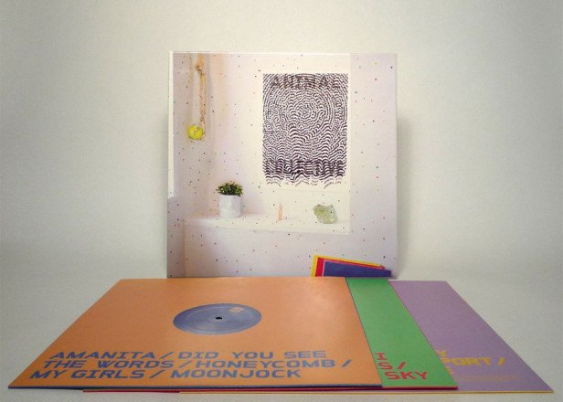 Animal Collective release live LP boxset Live at 9:30