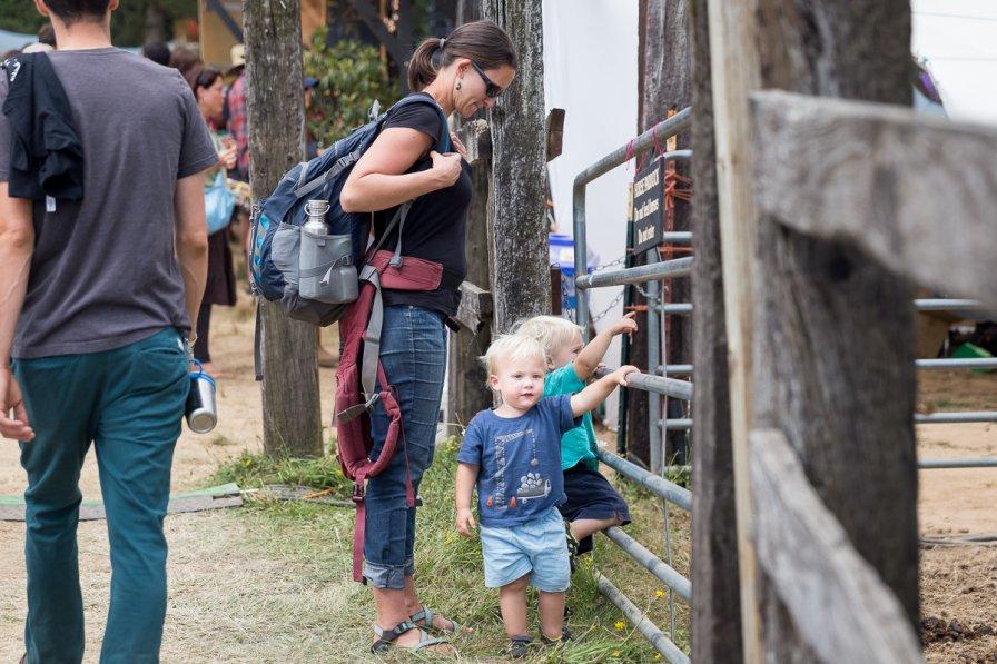 kids at Pickathon watching the horses