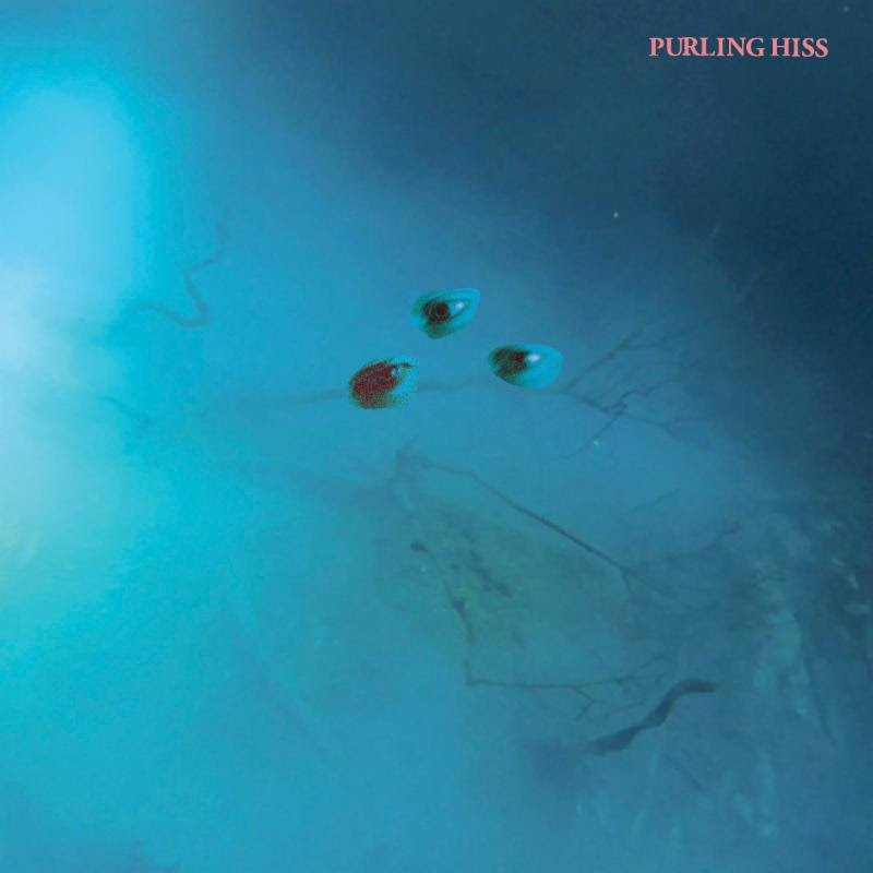 Purling Hiss announce new album High Bias on Drag City, aim to offset the darkening times