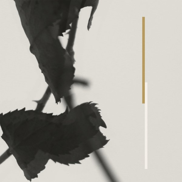 Kara-Lis Coverdale delivers new album Grafts through Boomkat Editions