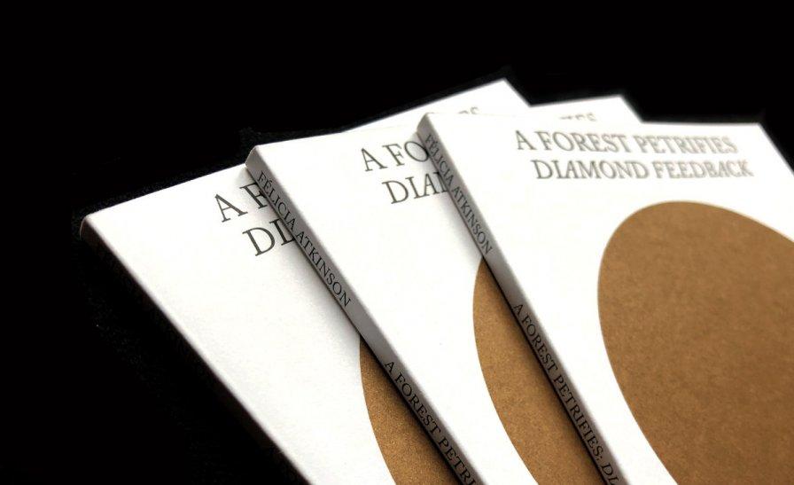 Félicia Atkinson releases new book A Forest Petrifies: Diamond Feedback via Shelter Press