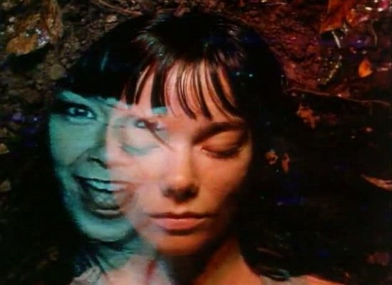 Björk bows out of Primavera fests on doctor's orders